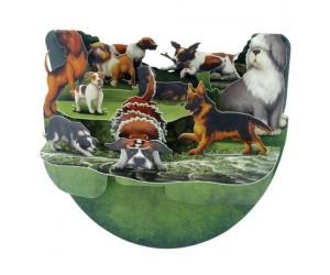 Dog Breeds Pnr056