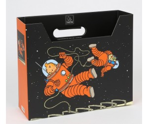 Boîte Filière Tintin et Haddock Astronaute