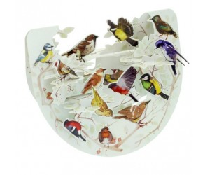 Garden Birds Pnr068